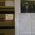 Novi udar verbalnog nasilja na organizacije civilnog društva