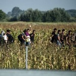 Izbjeglice preživljavaju u katastrofalnim uvjetima