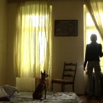Nagrada dokumentarnom filmu 'Bolesno' Hrvoja Mabića