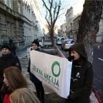 Zelena akcija: Zagrebačka Gradska uprava namjerava posjeći cijeli drvored u Gajevoj ulici