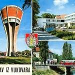 BOJAN GLAVAŠEVIĆ Sjećanje na Vukovar – Ne želim pamtiti samo krv