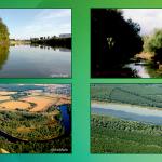 Zeleni Osijek u borbi protiv korupcije u zaštiti prirode