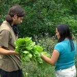 Udruga ZMAG organizira Dan permakulture