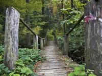 Foto: Park prirode Medvednica