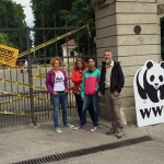 WWF zatvorio Maksimir