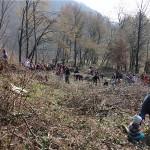 Na Medvednici sadnjom 500 sadnica obilježen Svjetski dan zaštite okoliša