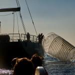 Greenpeace: Jadranski otoci guše se u plastici, potpišite peticiju protiv jednokratne plastike