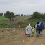 IOM: nove migrantske rute kroz Španjolsku i Rumunjsku