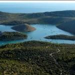 WWF za očuvanje vrsta u morskim zaštićenim područjima