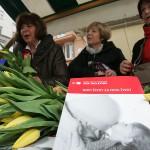 Zaklada Ana Rukavina u petak održava 6. Dan otvorenih srca