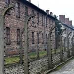 Poljski zakon o holokaustu ozbiljna kontroverza i meta kritika u Poljskoj i inozemstvu