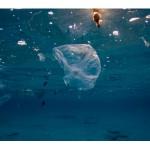 Kako kroz dan bez plastike?