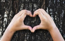 Udruga Bioteka poziva na radionicu Mladi za okoliš