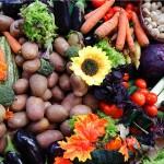 Hrvati bacaju čak trećinu hrane! Udruge su se suprostavile tome trendu vrijednim inicijativama