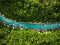 WWF: novo izvješće organizacija za zaštitu prirode razotkriva moćne lobije koji ih žele uništiti