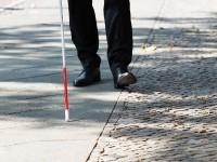 Obilježen Međunarodni dan bijelog štapa: Važno je slijepim osobama omogućiti digitalnu pristupačnost mrežnim stranicama