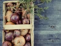 U okviru EU projekta 'Hrana i zajednica' kreirat će se nova inovativna rješenja za smanjenje nastanka otpada od hrane
