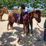 Konjički klub Kolan iz Šibenika besplatnim terapijskim jahanjem pospješuje napredak djece i mladih u svojoj županiji