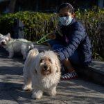 Tko spašava životinje u Kini tijekom epidemije koronavirusa?