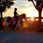 Konjički klub Kolan organizira natjecanje u terapijskom jahanju za djecu i mlade