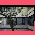 Razgovor o arhitekturi i svakodnevici Pučkog otvorenog učilišta u Zagrebu