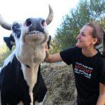 Prijatelji životinja obilježavaju Međunarodni dan zaštite životinja performansom u središtu Zagreba