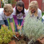 Održane volonterske akcije u sklopu projekta EdUTOPIJA 21 – stvaramo održivu budućnost