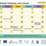 S novom godinom nove aktivnosti Društvenog centara Borovje