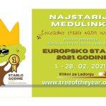 Bira se Europsko stablo godine – podržite 'Najstariju Medulinku'!