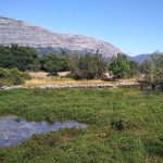 Ekologija i zdrav život tema novog programa u Društvenom centru Dinarsko srce