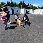 Udruge provele anketu o stanju djece i mladih s poteškoćama u razvoju na potresom pogođenom prostoru