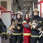 Vatrogasci: Svjedočili smo okrutnostima držanja pasa na lancu!
