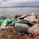 UN: Plastika prijeti migratornim životinjskim vrstama azijsko-pacifičke regije